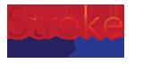 stroke_2012 logo